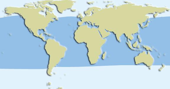 short finned pilot whale habitat